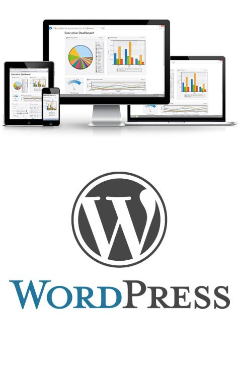 web agency e realizzazione siti internet